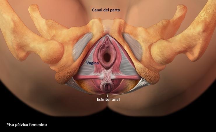 erotische geschichten porno sexgeschichten mp3